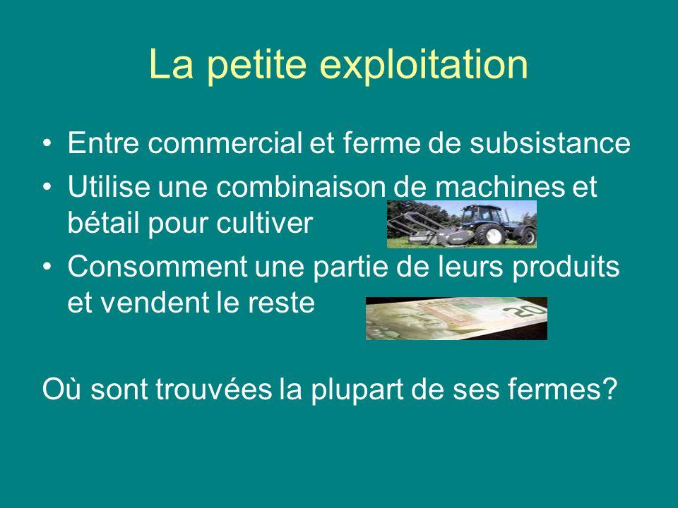 La petite exploitation Entre commercial et ferme de subsistance Utilise une combinaison de machines et bétail pour cultiver Consomment une partie de l