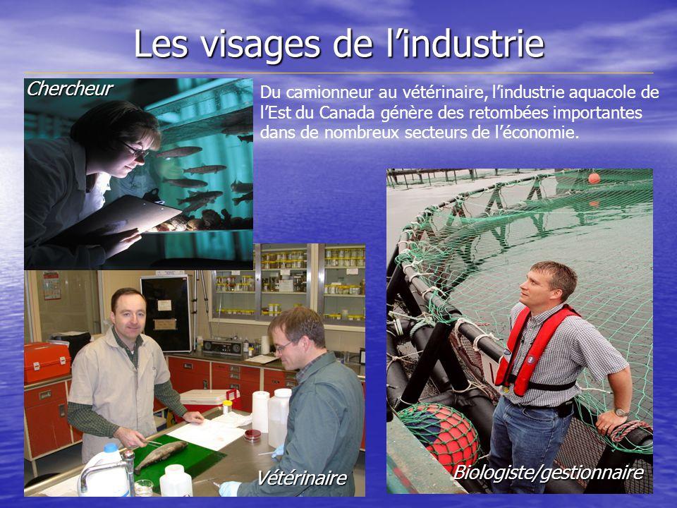 Les visages de lindustrie Biologiste/gestionnaire Vétérinaire Chercheur Du camionneur au vétérinaire, lindustrie aquacole de lEst du Canada génère des retombées importantes dans de nombreux secteurs de léconomie.