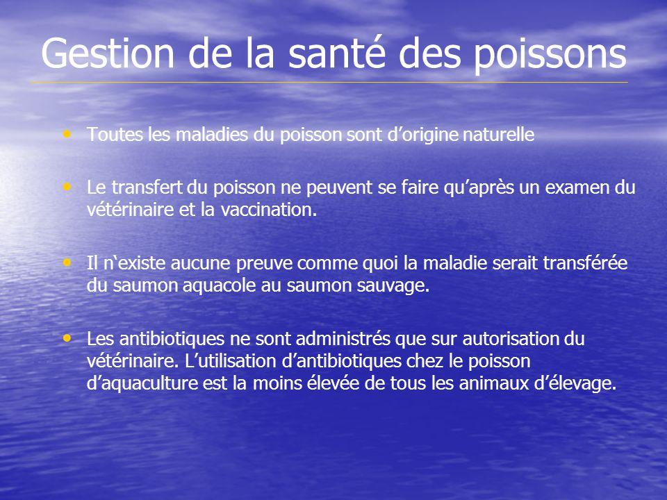 Gestion de la santé des poissons Toutes les maladies du poisson sont dorigine naturelle Le transfert du poisson ne peuvent se faire quaprès un examen du vétérinaire et la vaccination.