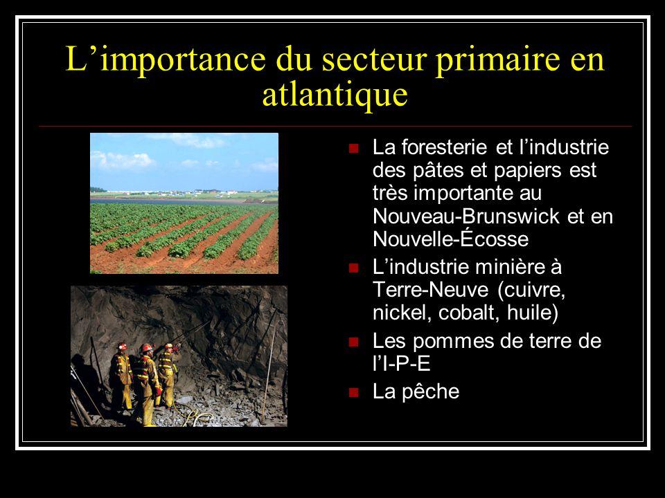 Limportance du secteur primaire en atlantique La foresterie et lindustrie des pâtes et papiers est très importante au Nouveau-Brunswick et en Nouvelle