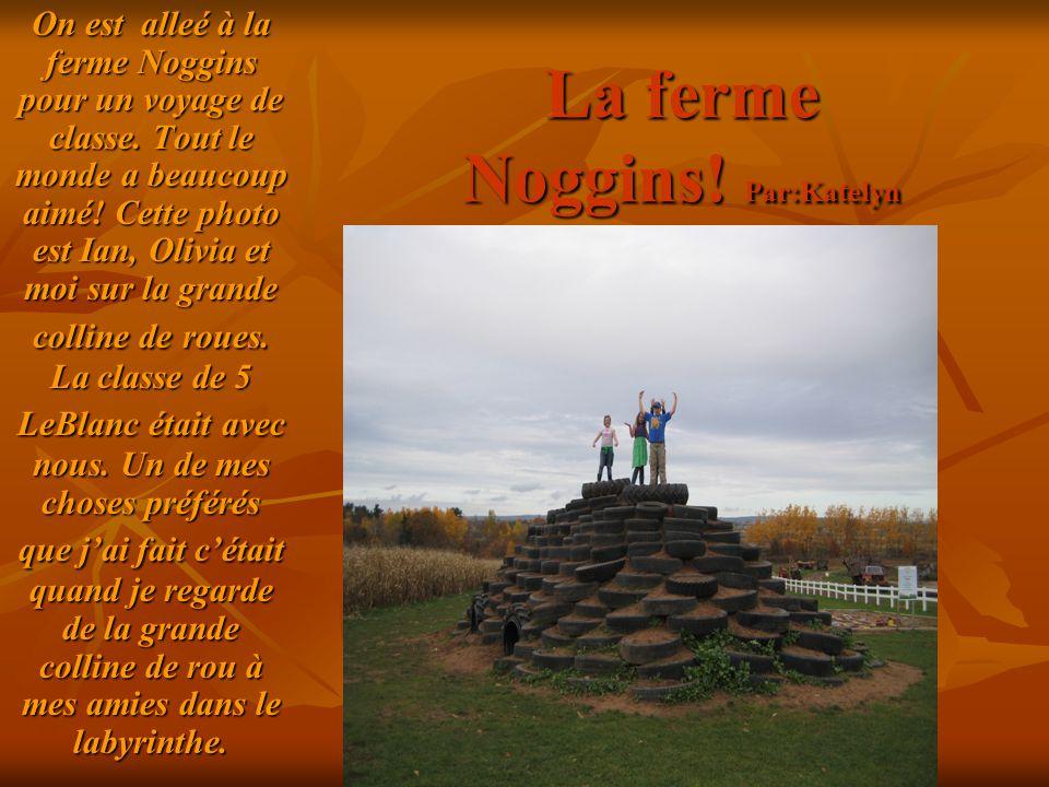 La ferme Noggins! Par:Katelyn On est alleé à la ferme Noggins pour un voyage de classe. Tout le monde a beaucoup aimé! Cette photo est Ian, Olivia et