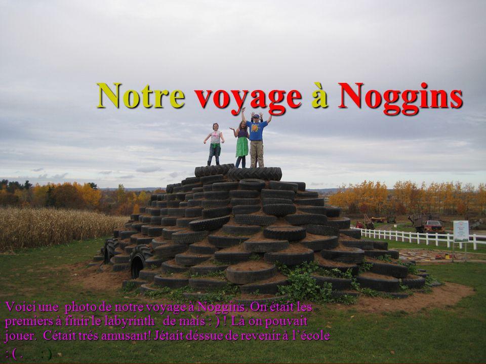 Notre voyage à Noggins Voici une photo de notre voyage à Noggins. On était les premiers à finir le labyrinth de mais : ) ! Là on pouvait jouer. Cétait