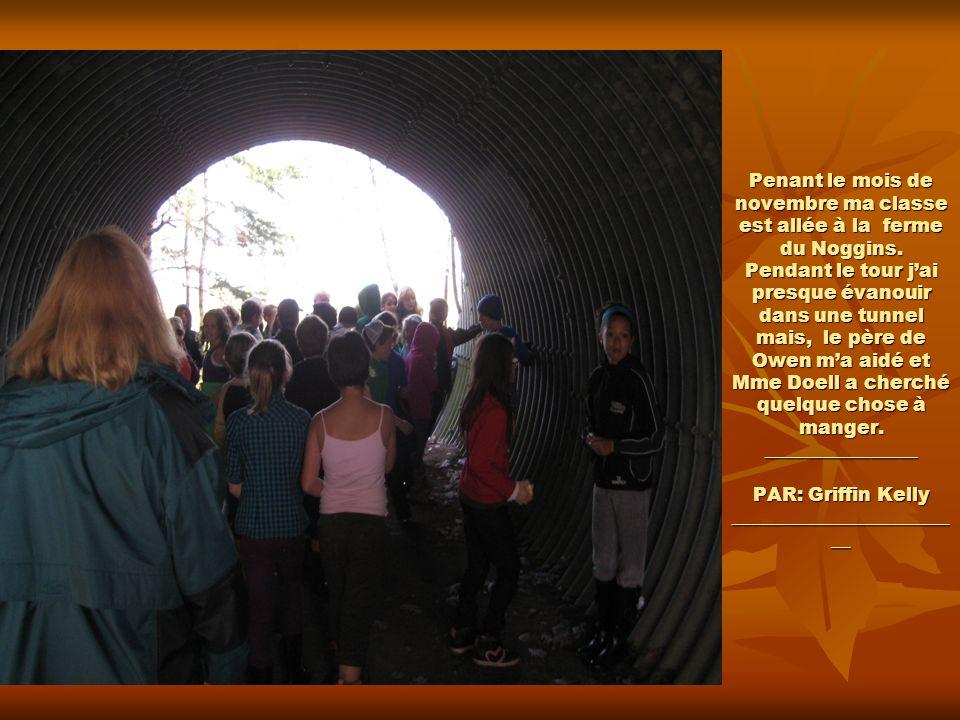 Penant le mois de novembre ma classe est allée à la ferme du Noggins. Pendant le tour jai presque évanouir dans une tunnel mais, le père de Owen ma ai