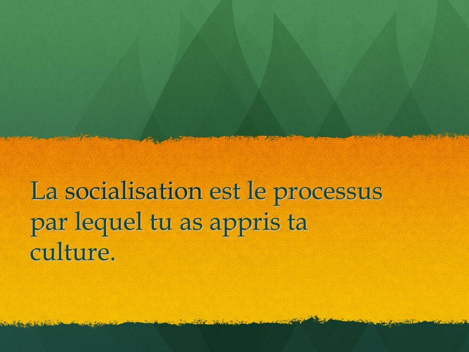 La socialisation est le processus par lequel tu as appris ta culture.