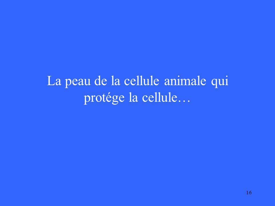 16 La peau de la cellule animale qui protége la cellule…
