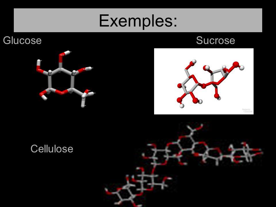 Exemples: GlucoseSucrose Cellulose
