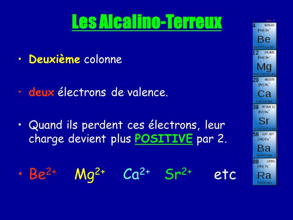 Les Alcalino-Terreux Deuxième colonne deux électrons de valence. Quand ils perdent ces électrons, leur charge devient plus POSITIVE par 2. Be 2+ Mg 2+