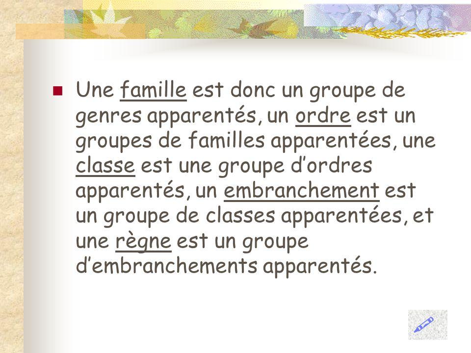 Une famille est donc un groupe de genres apparentés, un ordre est un groupes de familles apparentées, une classe est une groupe dordres apparentés, un