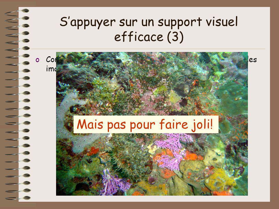 Sappuyer sur un support visuel efficace (3) oComplémentaire : il permet de présenter des schémas, des images, des graphiques… Mais pas pour faire joli