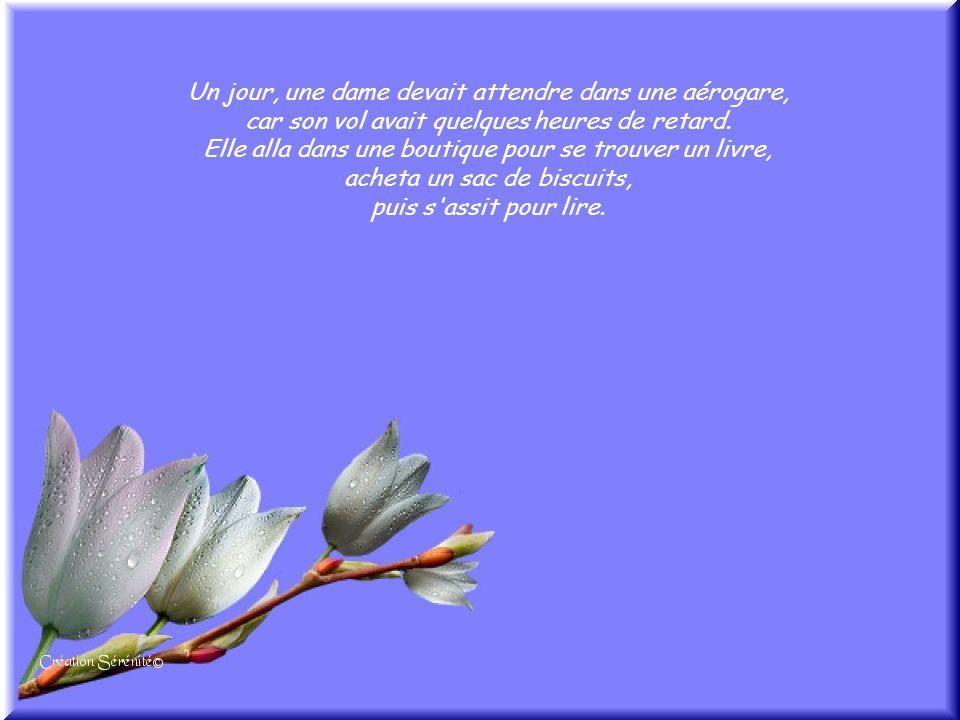Cliquez pour débuter http://www.chezserenite.com/