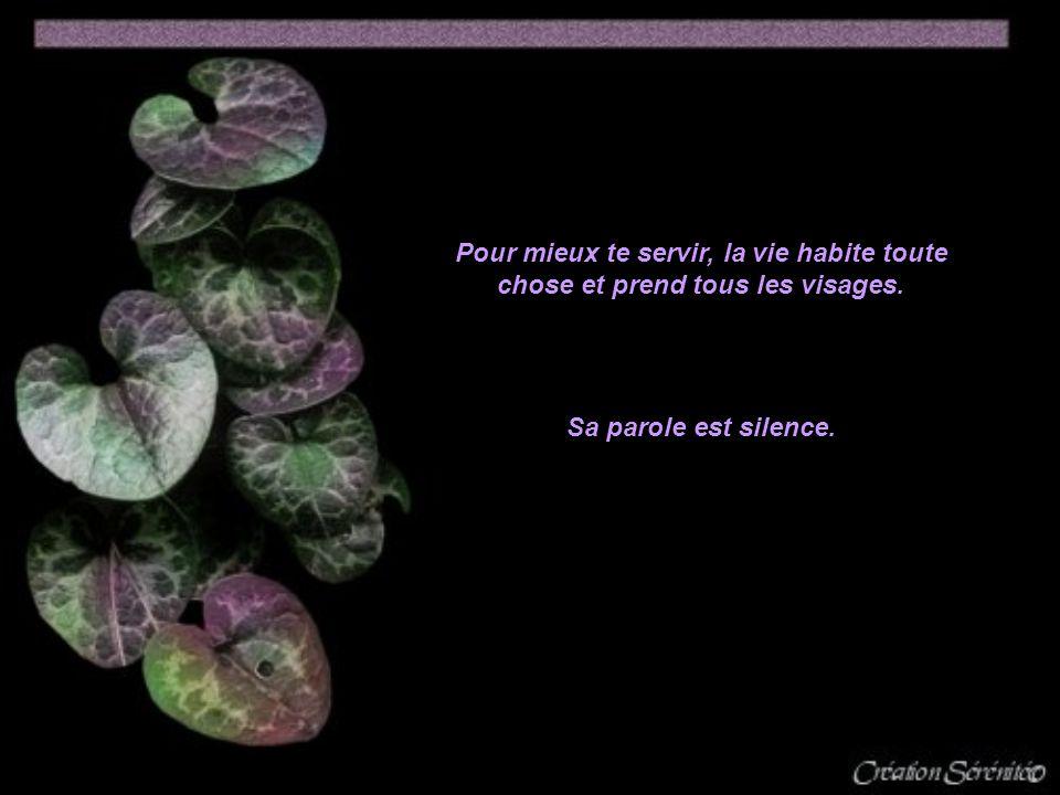 Pour mieux te servir, la vie habite toute chose et prend tous les visages. Sa parole est silence.