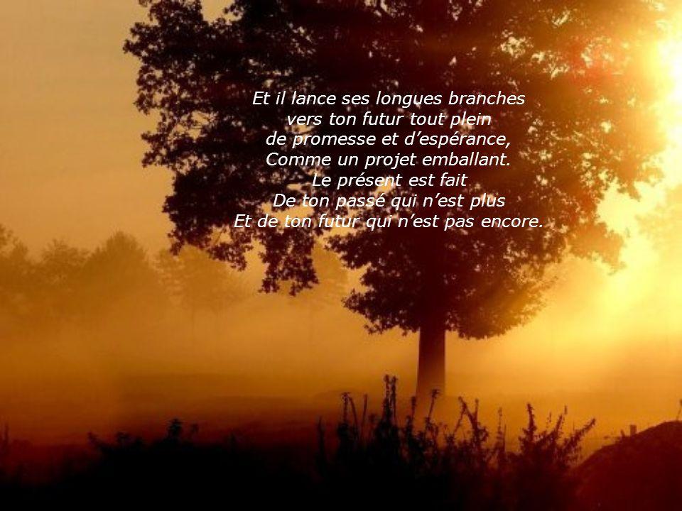 Mais tu peux toujours cueillir le présent comme un beau présent de Dieu. Ce présent est comme un grand arbre: il plonge ses profondes racines dans ton