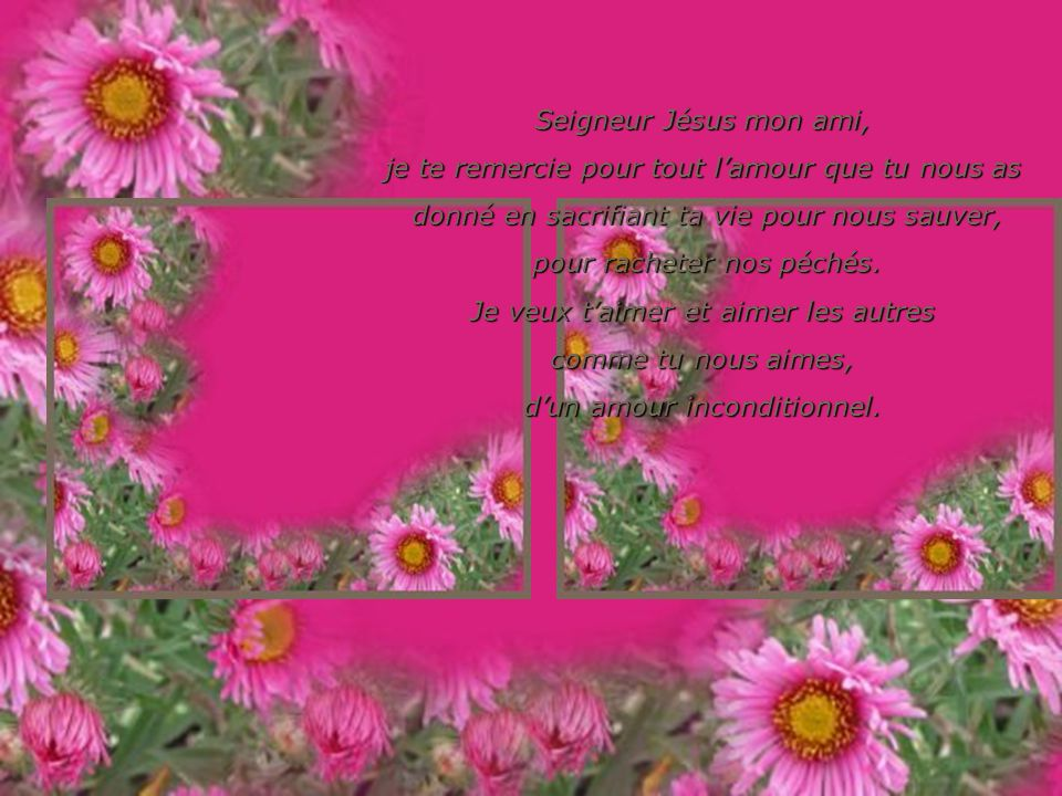Seigneur Jésus mon ami, je te remercie pour les beautés de ta création comme un beau coucher de soleil, une abeille qui butine, larôme dune fleur, une chute deau.