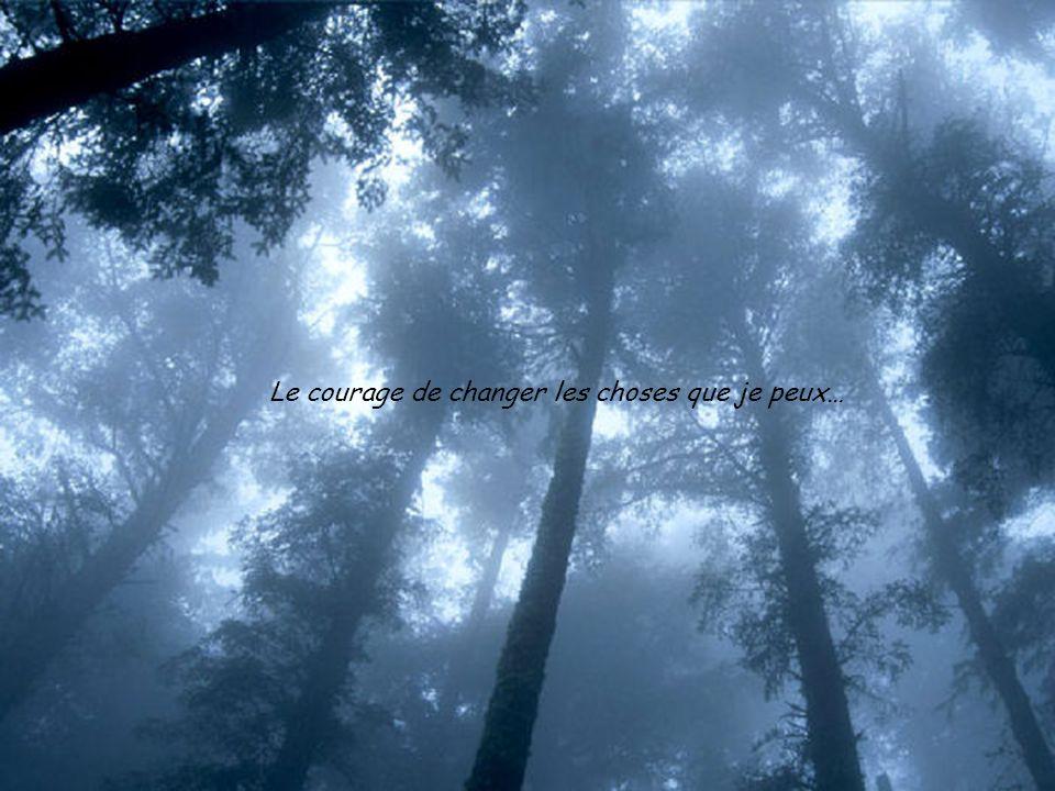 Je dois accepter le fait que je ne puisse changer à peu près rien, ni le passé, ni lavenir, ni les autres; je dois accepter le fait quil mest impossib