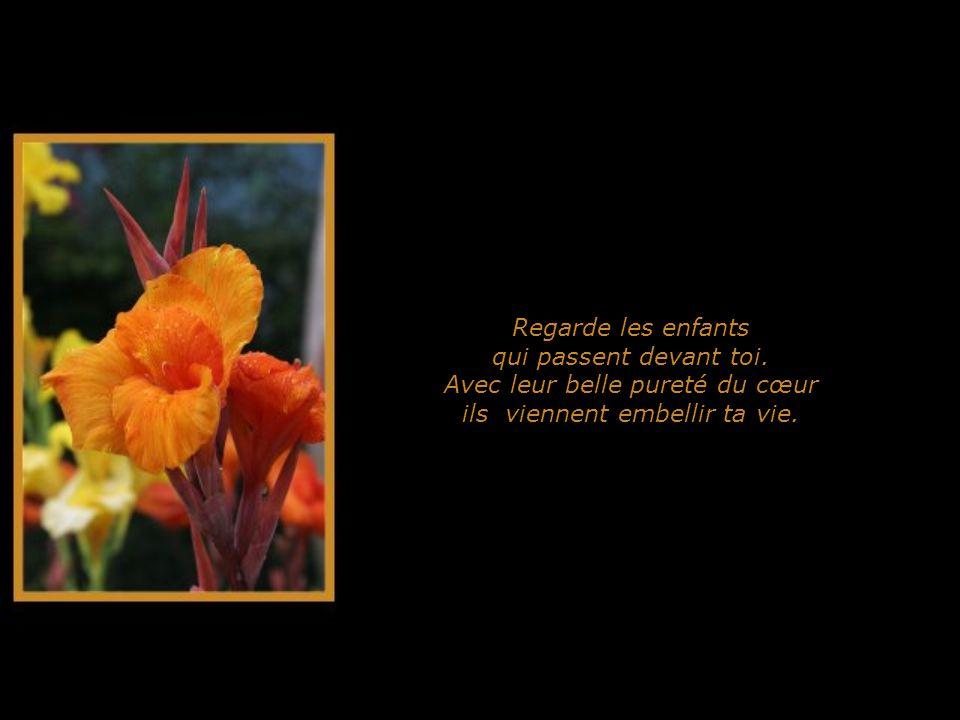 Regarde aussi les fleurs qui sépanouissent en toffrant leur beauté.