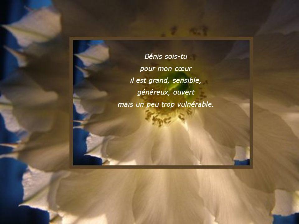 Bénis sois-tu pour mes larmes de joie quand marrivent une lettre amicale, une fleur, un cadeau, une parole chaleureuse.