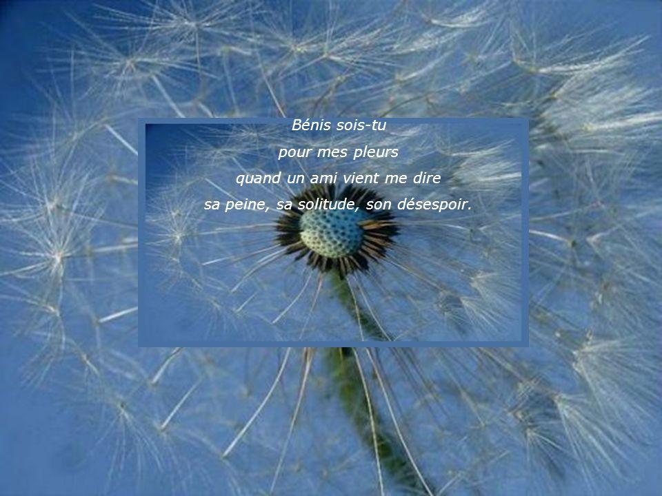 Bénis sois-tu pour mes pleurs quand je visite un grand malade et que je ne puis rien faire pour calmer sa douleur.