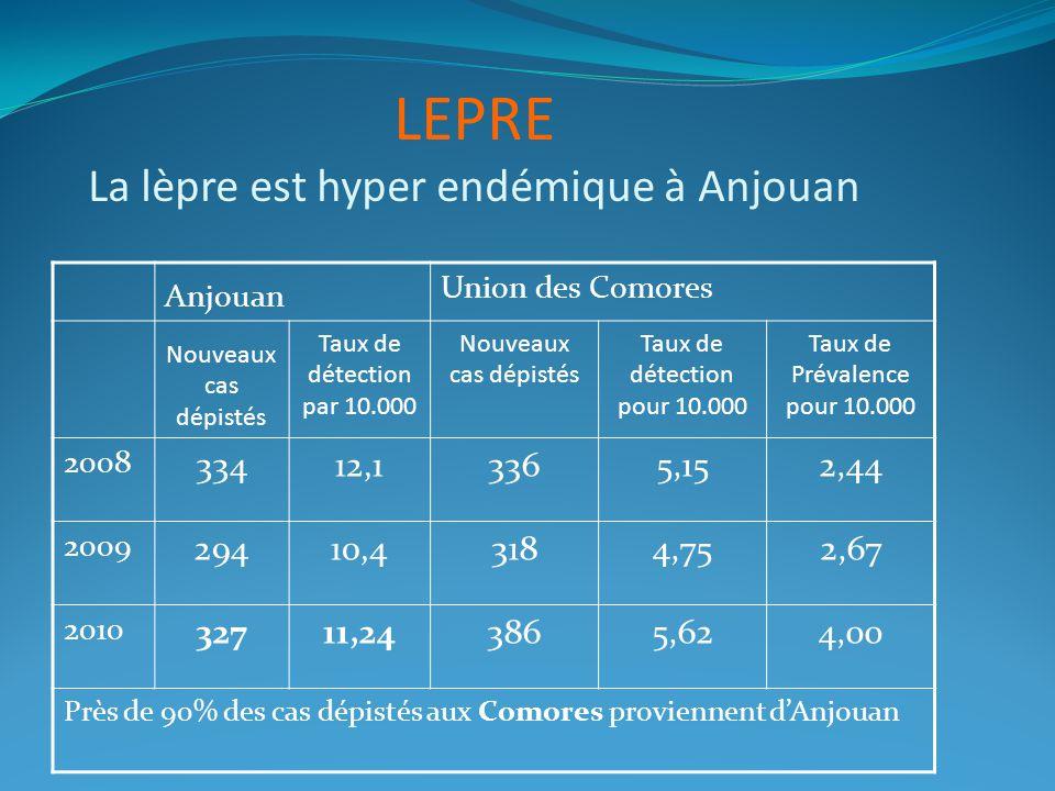 Anjouan Union des Comores Nouveaux cas dépistés Taux de détection par 10.000 Nouveaux cas dépistés Taux de détection pour 10.000 Taux de Prévalence pour 10.000 2008 33412,13365,152,44 2009 29410,43184,752,67 2010 32711,243865,624,00 Près de 90% des cas dépistés aux Comores proviennent dAnjouan