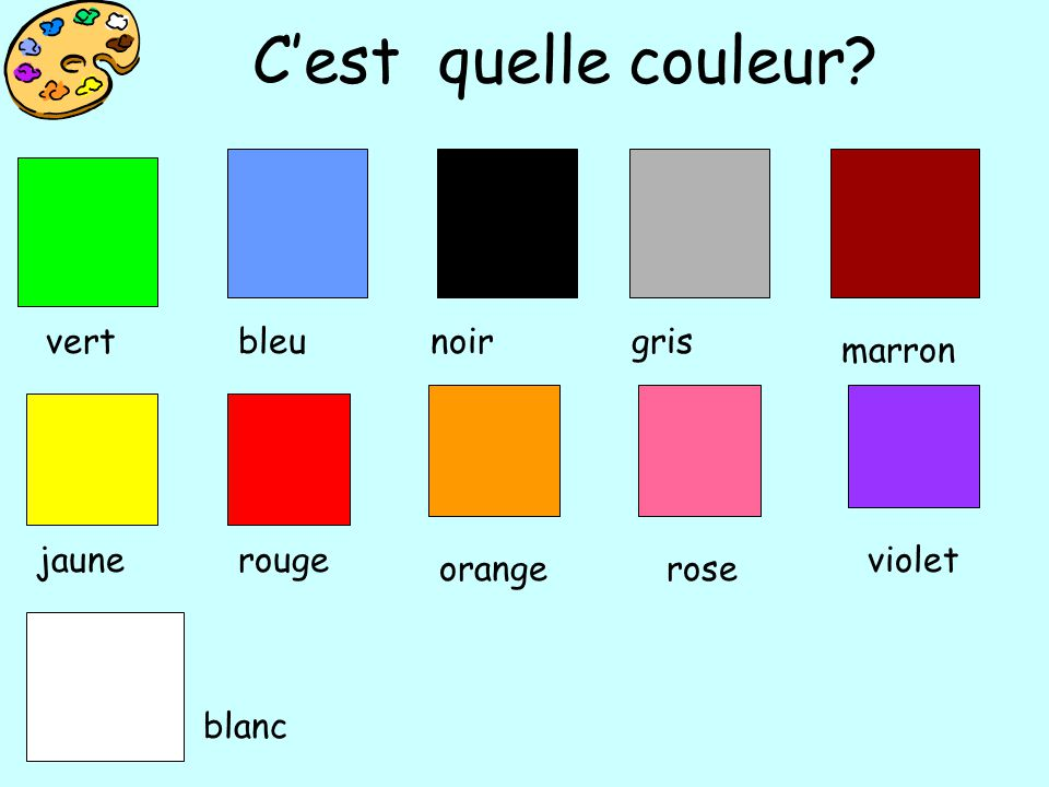 Cest quelle couleur? bleunoirgris marron jaunerouge orangerose violet blanc vert