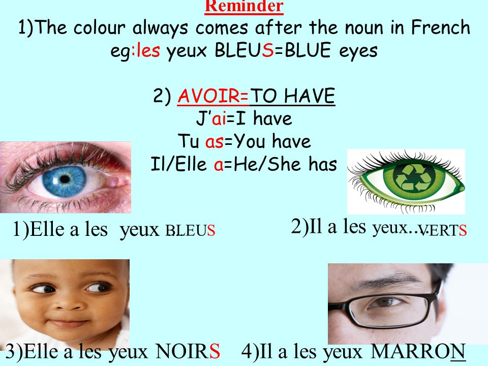 Reminder 1)The colour always comes after the noun in French eg:les yeux BLEUS=BLUE eyes 2) AVOIR=TO HAVE Jai=I have Tu as=You have Il/Elle a=He/She has 1)Elle a les yeux....