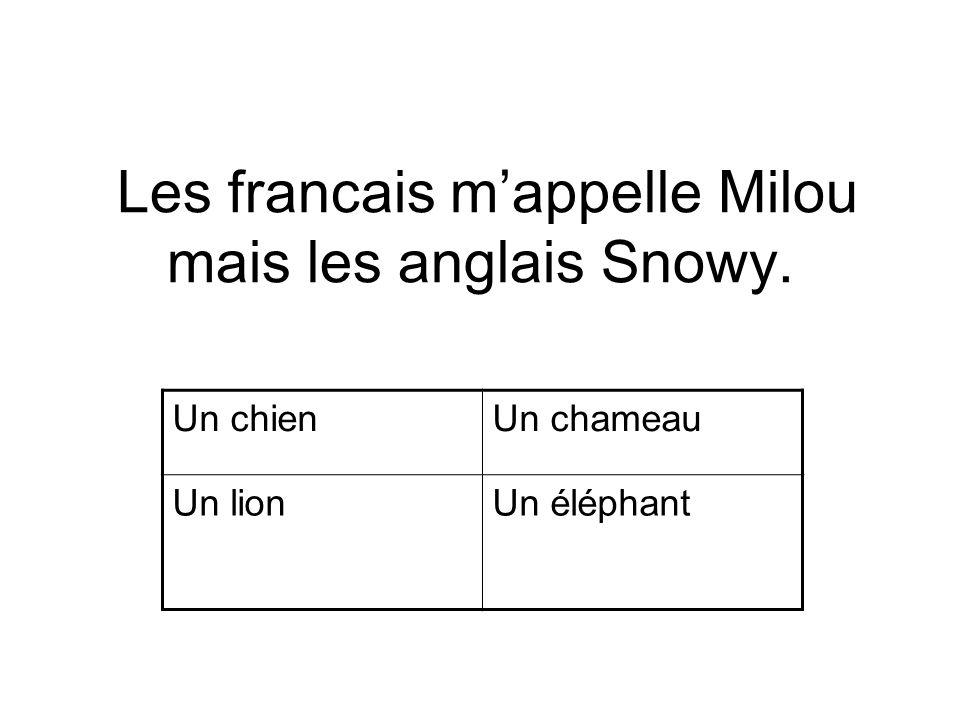 Les francais mappelle Milou mais les anglais Snowy. Un chienUn chameau Un lionUn éléphant