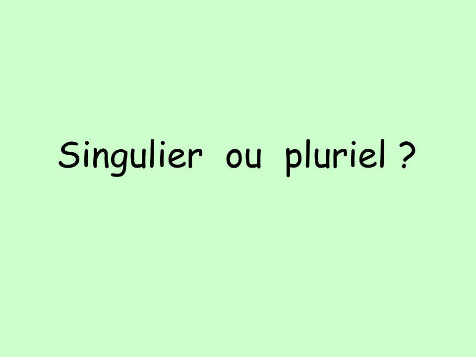 Singulier ou pluriel ?