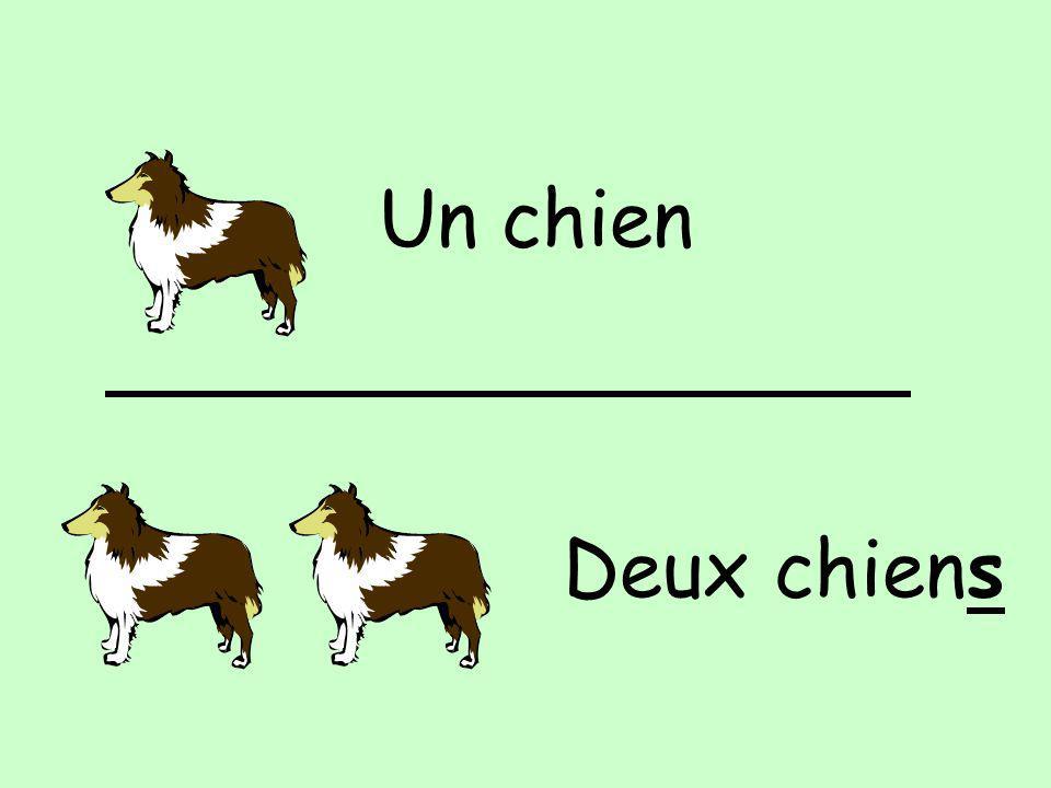 Un chien Deux chiens