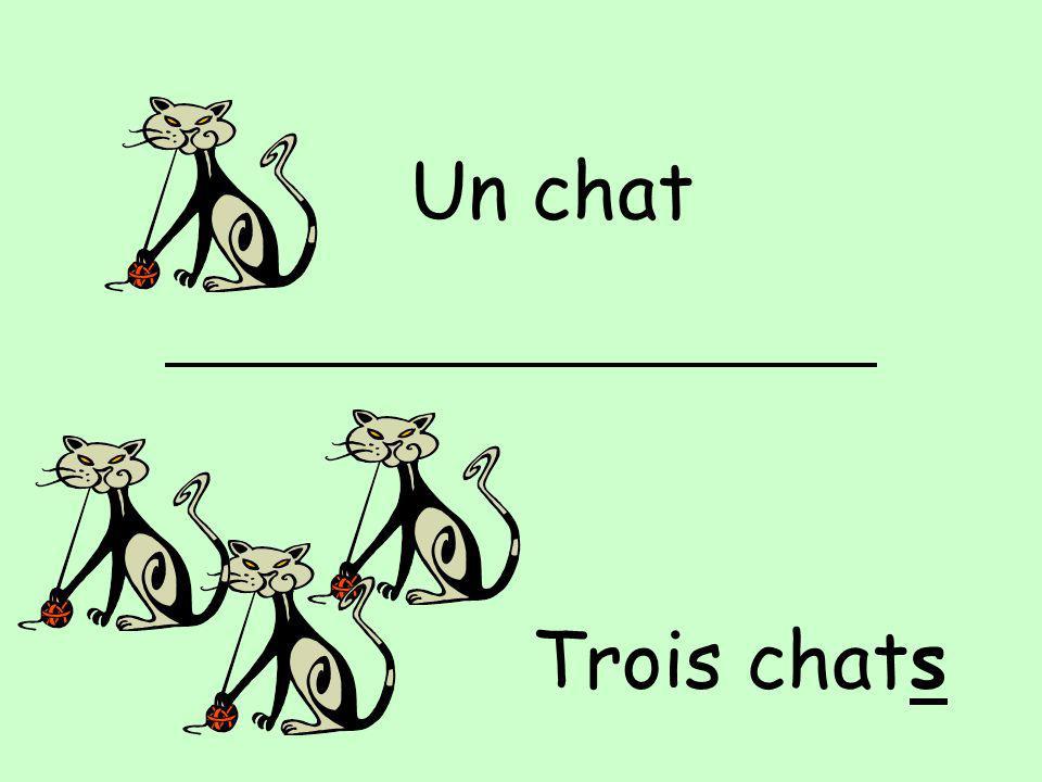 Un chat Trois chats
