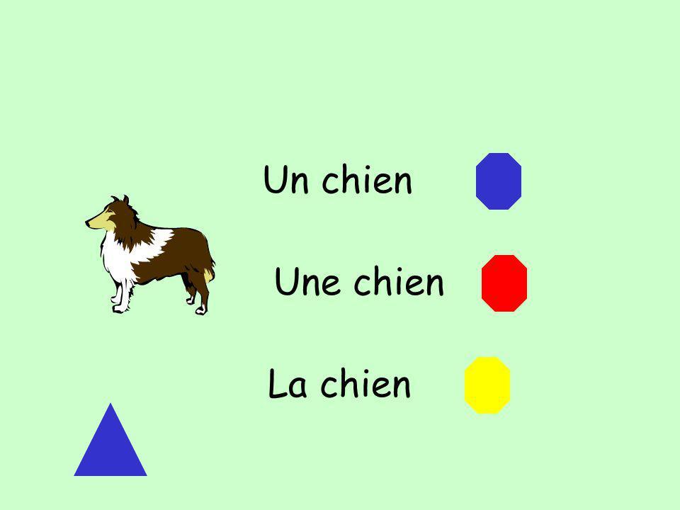 Un chien Une chien La chien