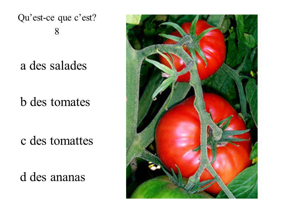 b des tomates Quest-ce que cest? 8 c des tomattes d des ananas a des salades