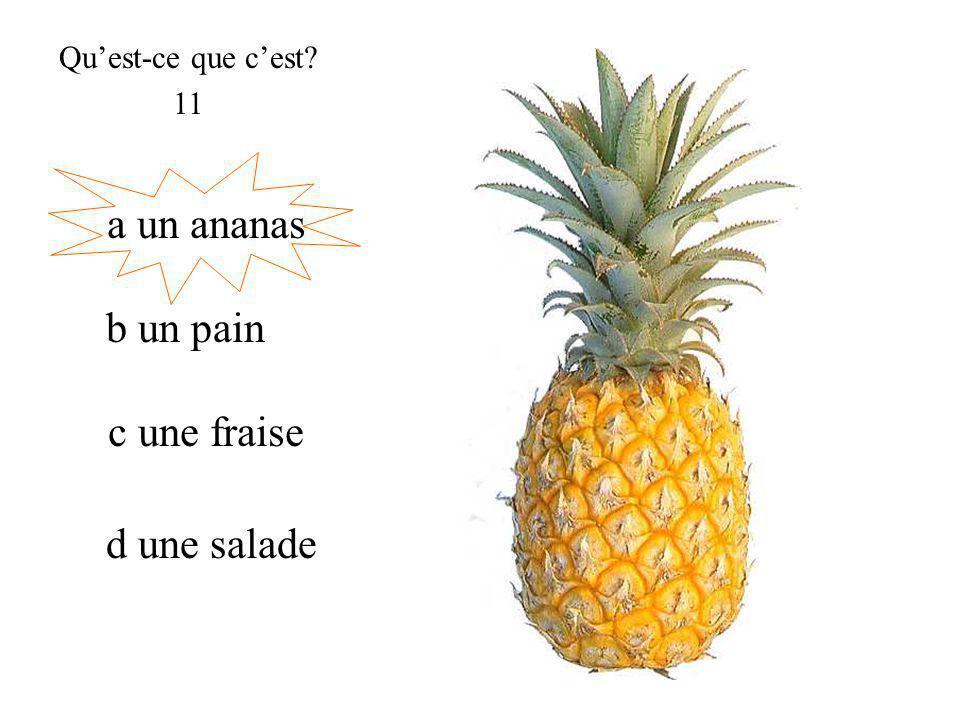 a un ananas Quest-ce que cest 11 b un pain c une fraise d une salade