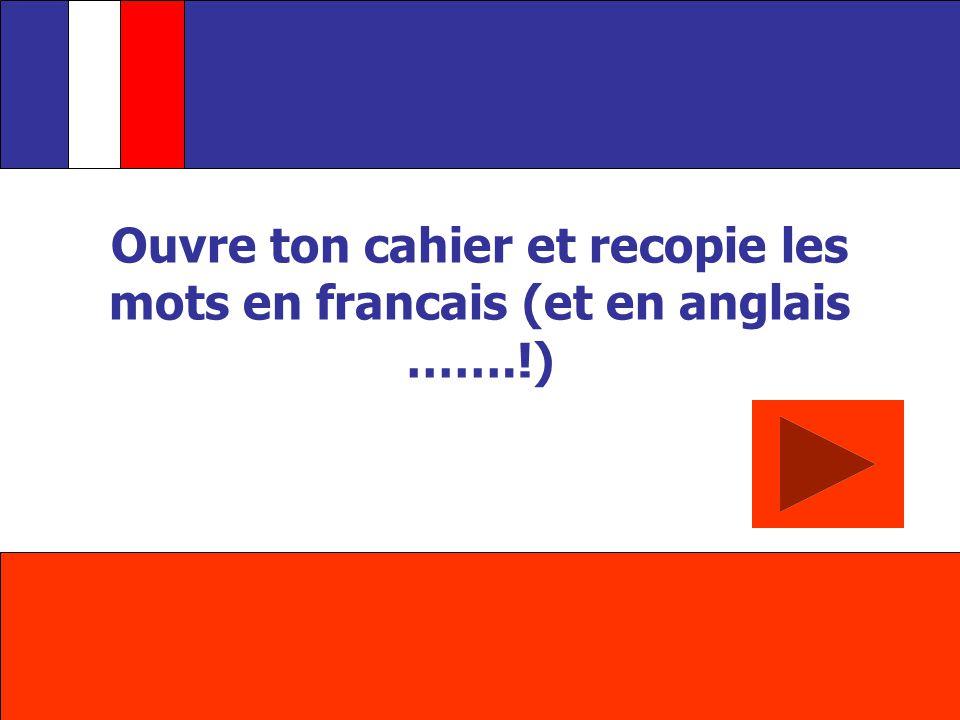 Ouvre ton cahier et recopie les mots en francais (et en anglais …….!)