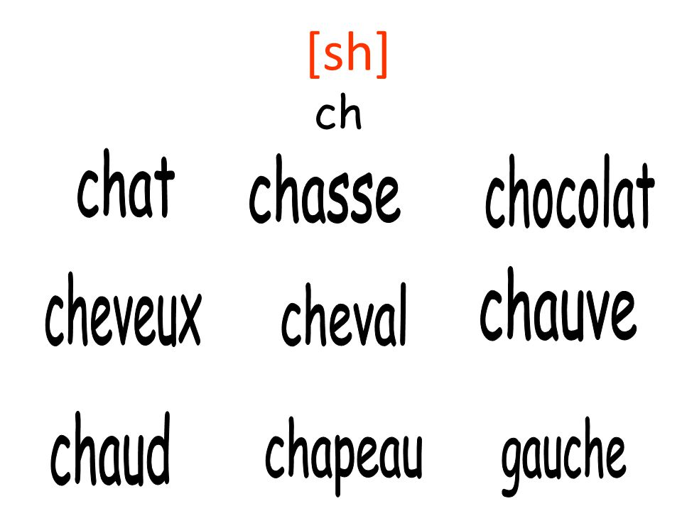 Une virelangue – prononce les phrases et dessine une image. Le chapeau du chameau est une cloche! Le cheval chasse le chocolat le chat joue à cache-ca