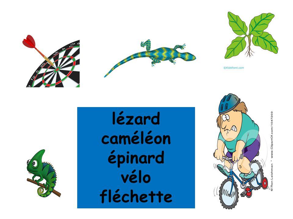 lézard caméléon épinard vélo fléchette