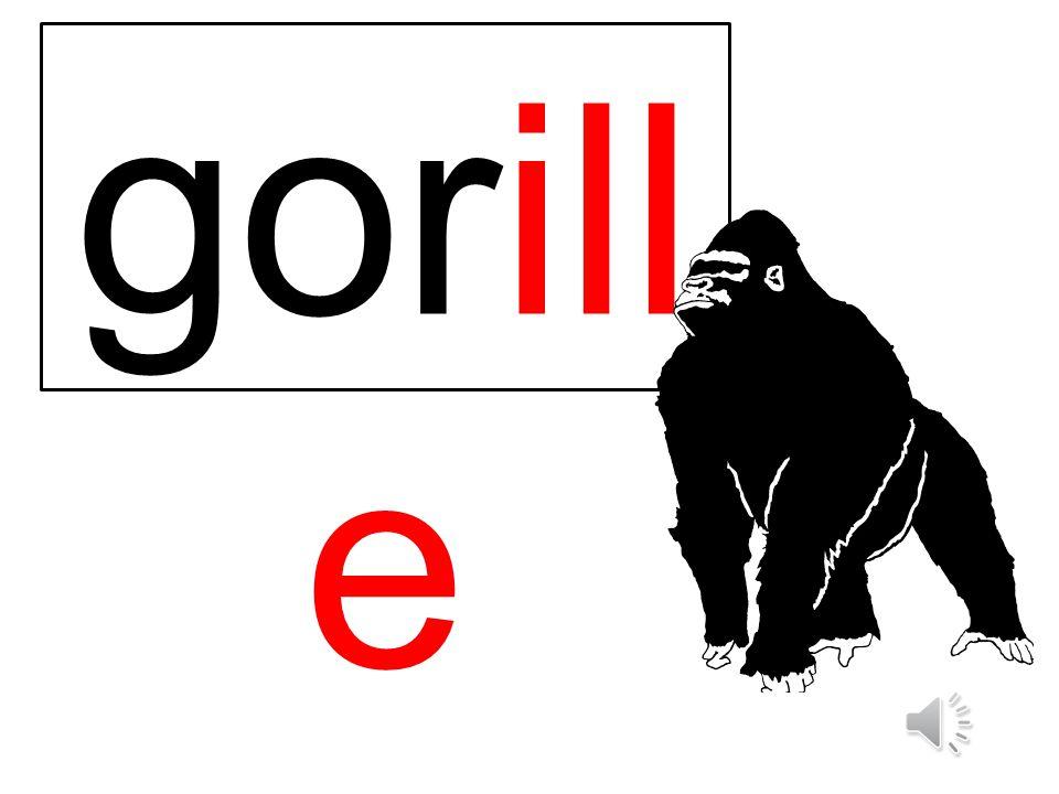 gorill e