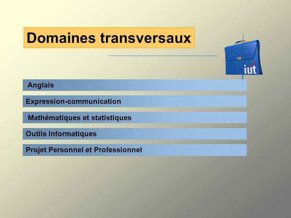 Anglais Domaines transversaux Expression-communication Mathématiques et statistiques Outils Informatiques Projet Personnel et Professionnel