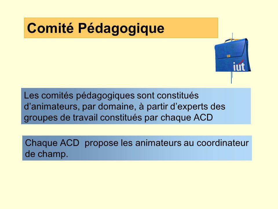 Comité Pédagogique Les comités pédagogiques sont constitués danimateurs, par domaine, à partir dexperts des groupes de travail constitués par chaque ACD Chaque ACD propose les animateurs au coordinateur de champ.