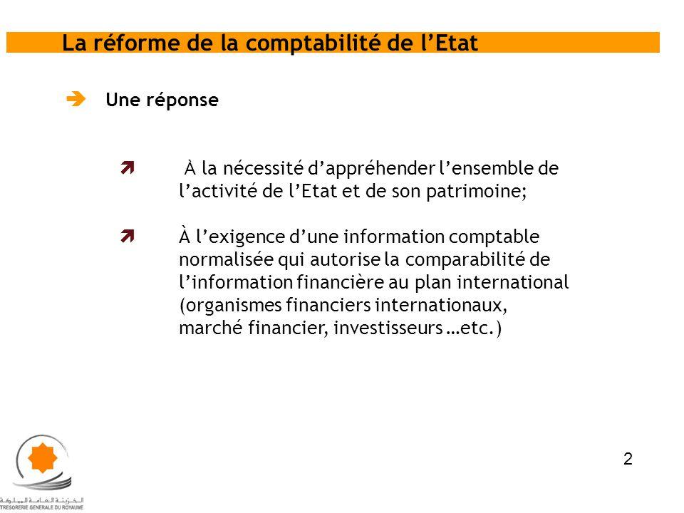 Il comprend un corpus composé de quatre grands volets : Le cadre conceptuel ; Le recueil des normes ; Le plan de comptes ; Les modalités de fonctionnement des comptes.