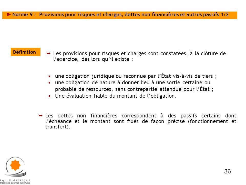 Norme 9 : Provisions pour risques et charges, dettes non financières et autres passifs 1/2 Définition Les provisions pour risques et charges sont cons