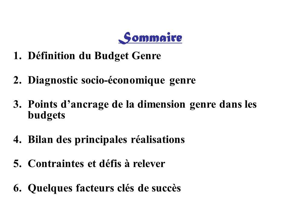 Sommaire 1.Définition du Budget Genre 2.Diagnostic socio-économique genre 3.Points dancrage de la dimension genre dans les budgets 4.Bilan des princip