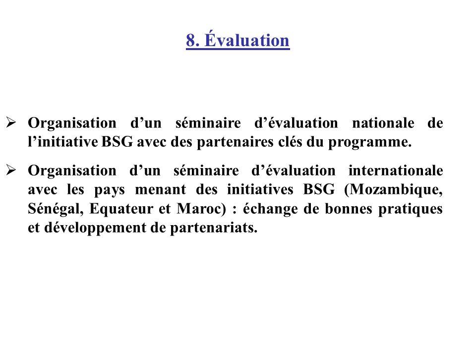 Organisation dun séminaire dévaluation nationale de linitiative BSG avec des partenaires clés du programme. Organisation dun séminaire dévaluation int