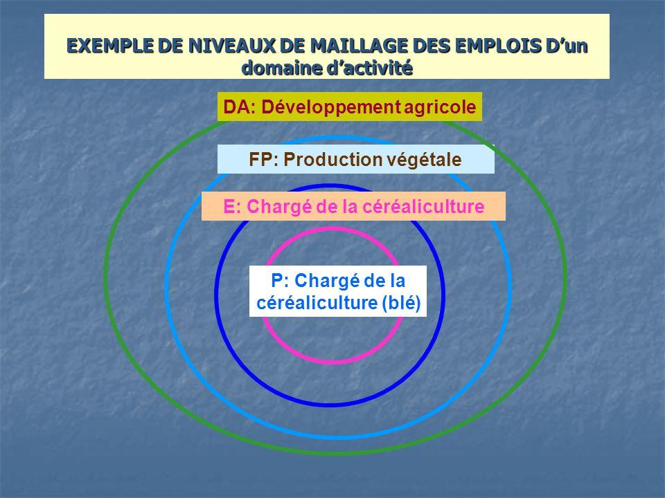 E: Chargé de la céréaliculture FP: Production végétale P: Chargé de la céréaliculture (blé) DA: Développement agricole EXEMPLE DE NIVEAUX DE MAILLAGE