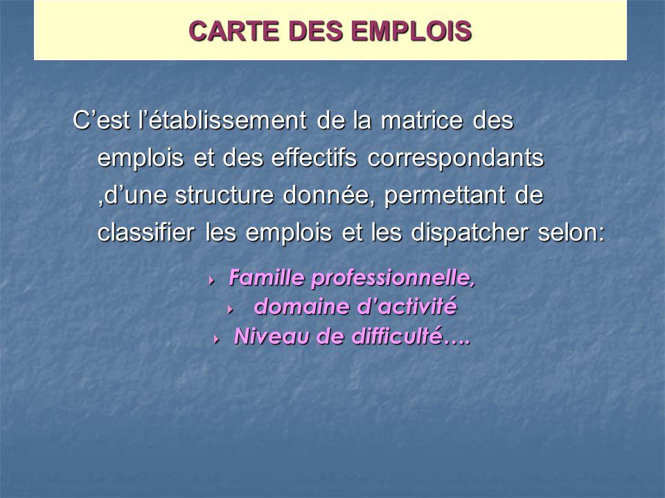Cest létablissement de la matrice des emplois et des effectifs correspondants,dune structure donnée, permettant de classifier les emplois et les dispa