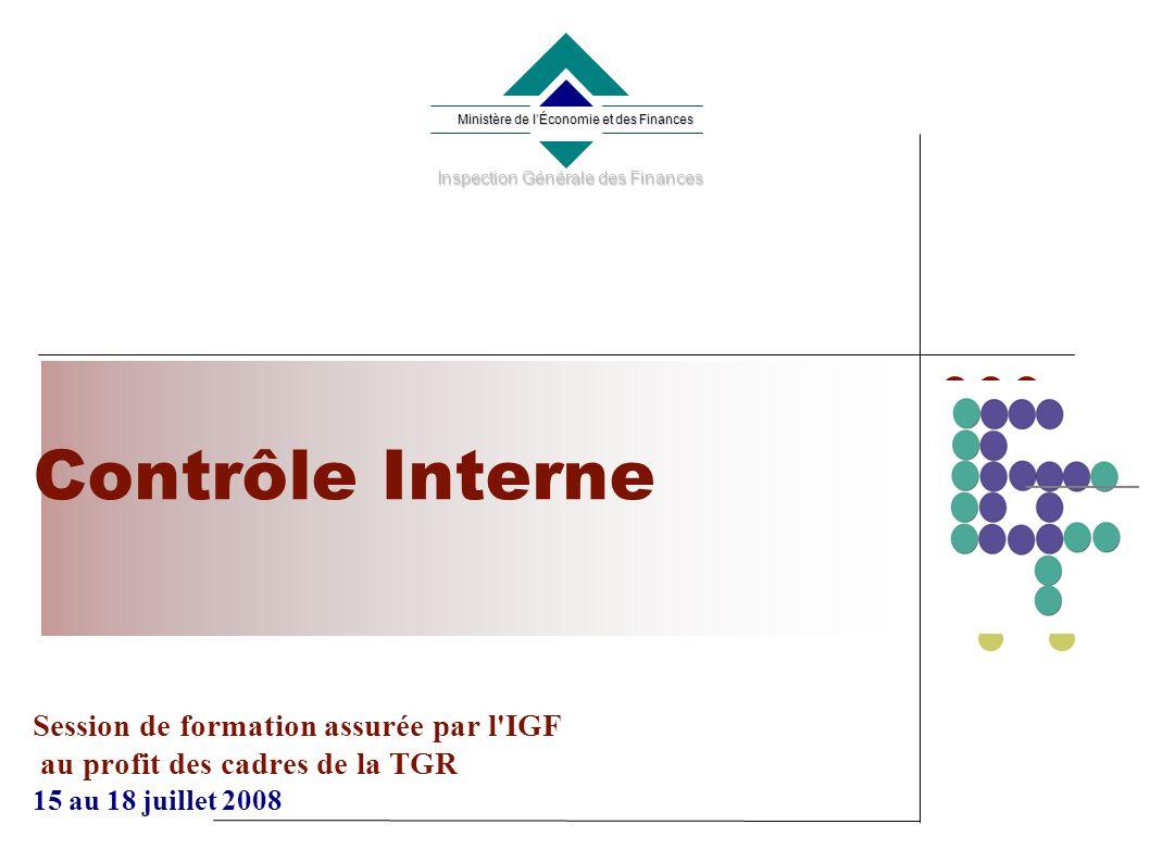 Contrôle Interne Session de formation assurée par l IGF au profit des cadres de la TGR 15 au 18 juillet 2008 Ministère de lÉconomie et des Finances Inspection Générale des Finances