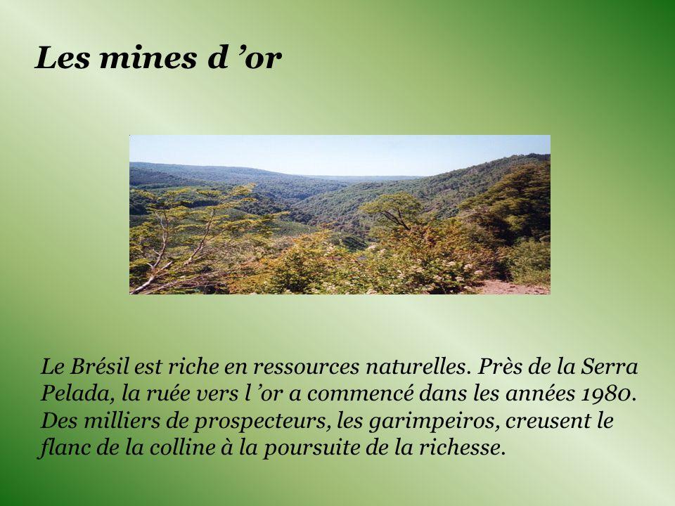 Les mines d or Le Brésil est riche en ressources naturelles.