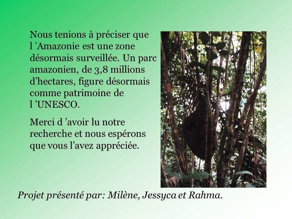 Nous tenions à préciser que l Amazonie est une zone désormais surveillée.