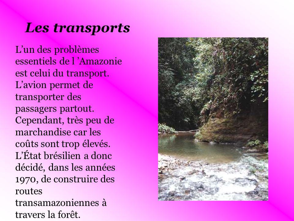 Les transports Lun des problèmes essentiels de l Amazonie est celui du transport.