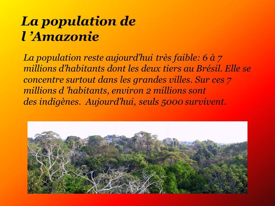 La population de l Amazonie La population reste aujourdhui très faible: 6 à 7 millions dhabitants dont les deux tiers au Brésil.