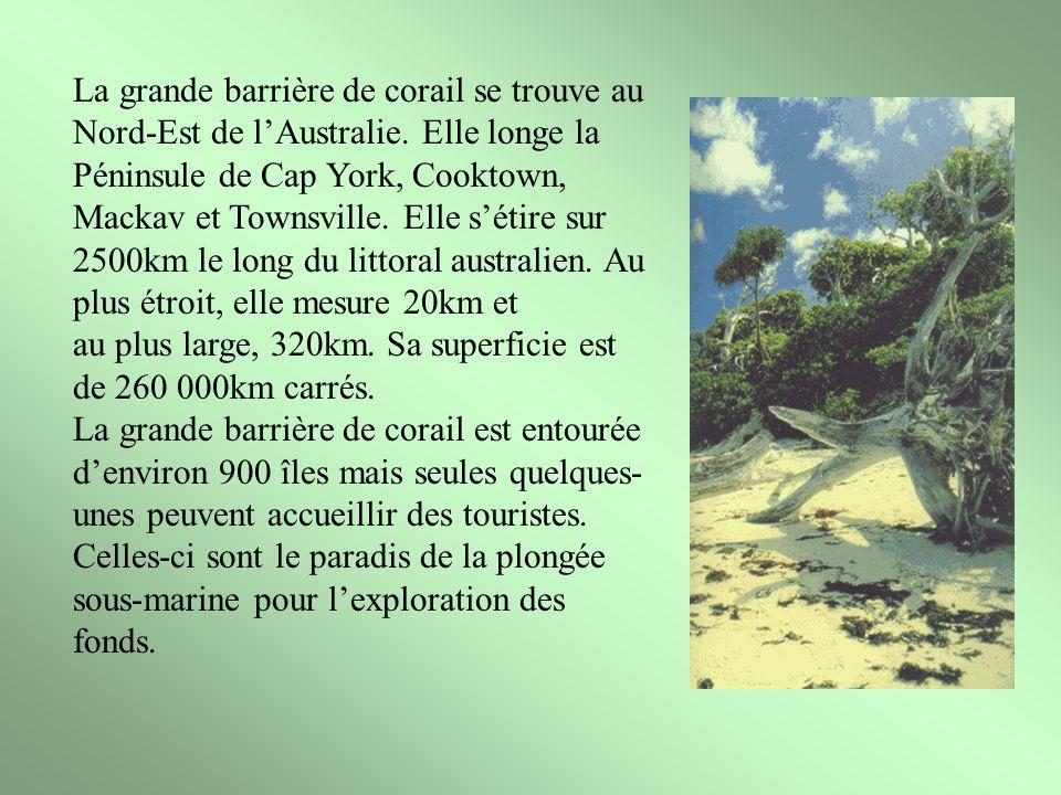 La grande barrière de corail se trouve au Nord-Est de lAustralie. Elle longe la Péninsule de Cap York, Cooktown, Mackav et Townsville. Elle sétire sur