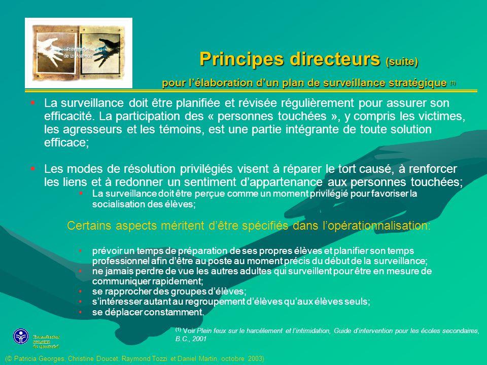 Principes directeurs (suite) pour lélaboration dun plan de surveillance stratégique (1) La surveillance doit être planifiée et révisée régulièrement pour assurer son efficacité.
